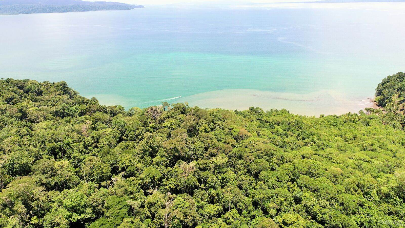Ферма На продажу в 169 ACRES - Amazing Property With Rivers, Jungle, Pasture, And Private Beach On Gulfo Dulce!!!!, Osa, Puntarenas   , Коста-Рика