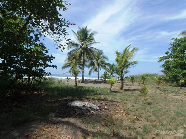 Продажа жилищных объектов в FIRE SALE...OCEANFRONT LOT READY TO BUILD IN PLAYA PALO SECO, COSTA RICA, Palo Seco, Puntarenas ,6300  , Коста-Рика