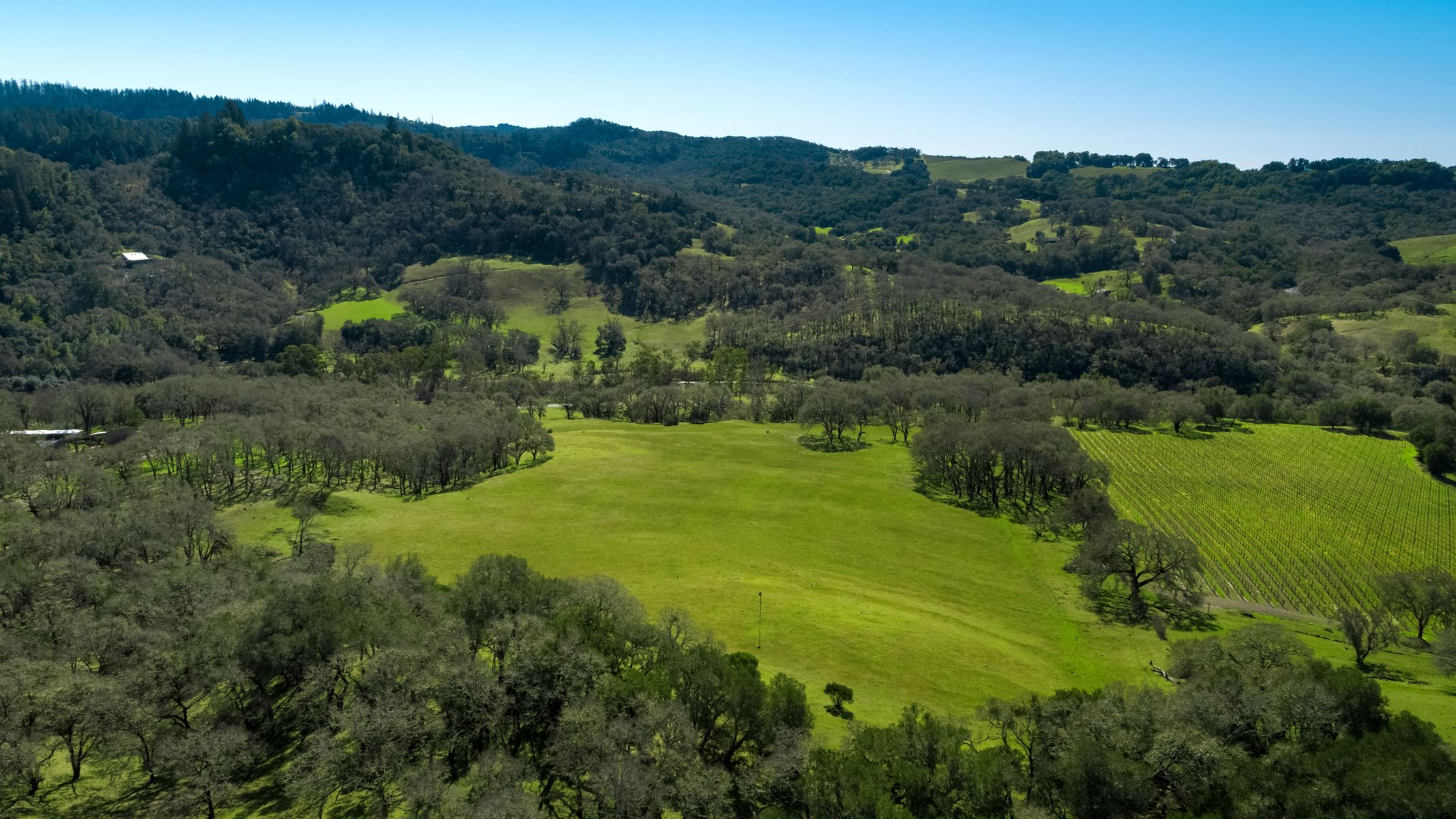 Земля на продажу в 11720 Chalk Hill Rd (Lot), Healdsburg, Калифорния ,95448  , США